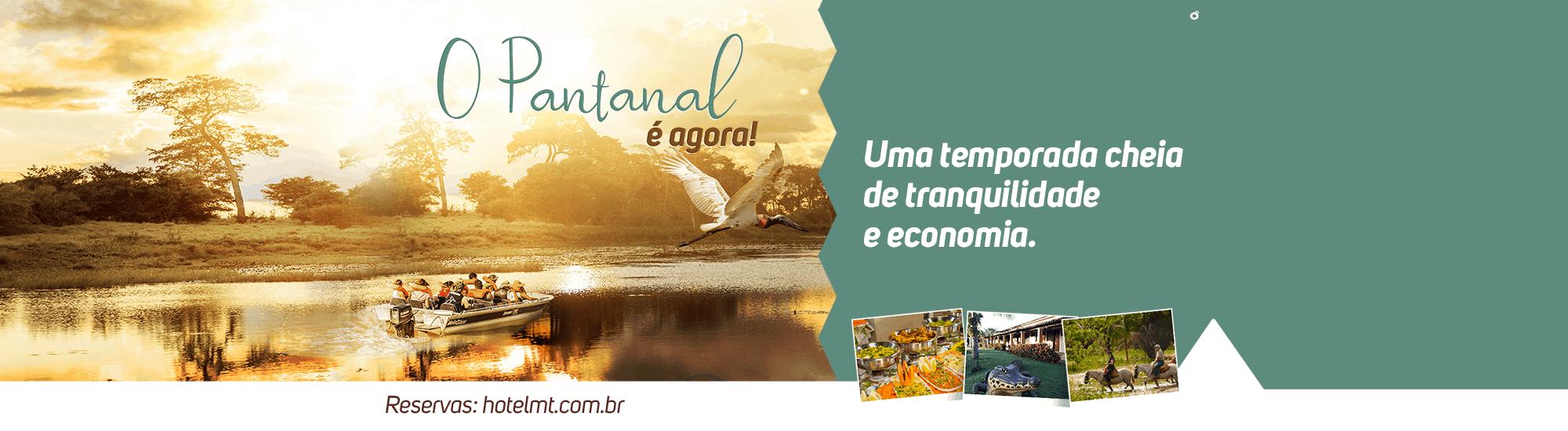 Baixa Temporada Pantanal