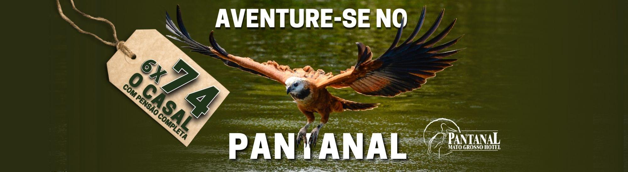 Aproveite esta oportunidade e conheça o Pantanal!